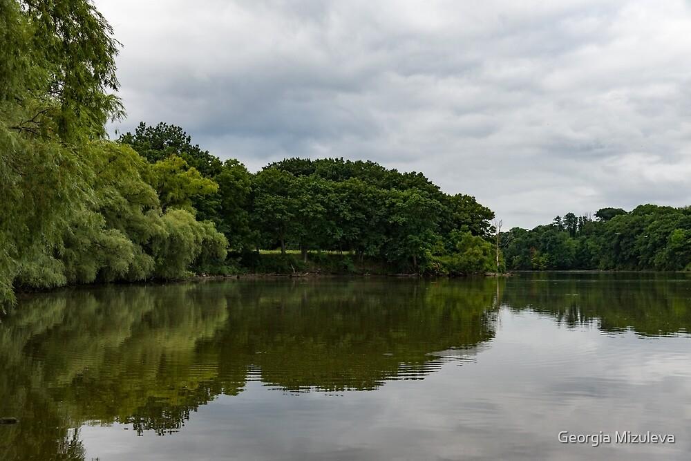 Green and Gray Summer Mirror by Georgia Mizuleva