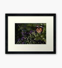 Flutter Flutter Framed Print