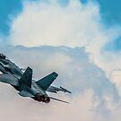 USAF 1 by Larry Llewellyn