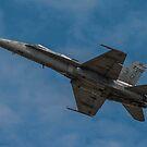USAF 2 by Larry Llewellyn