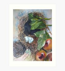 Empty Nests Art Print