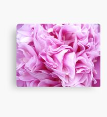 Pink Papery Peony Canvas Print