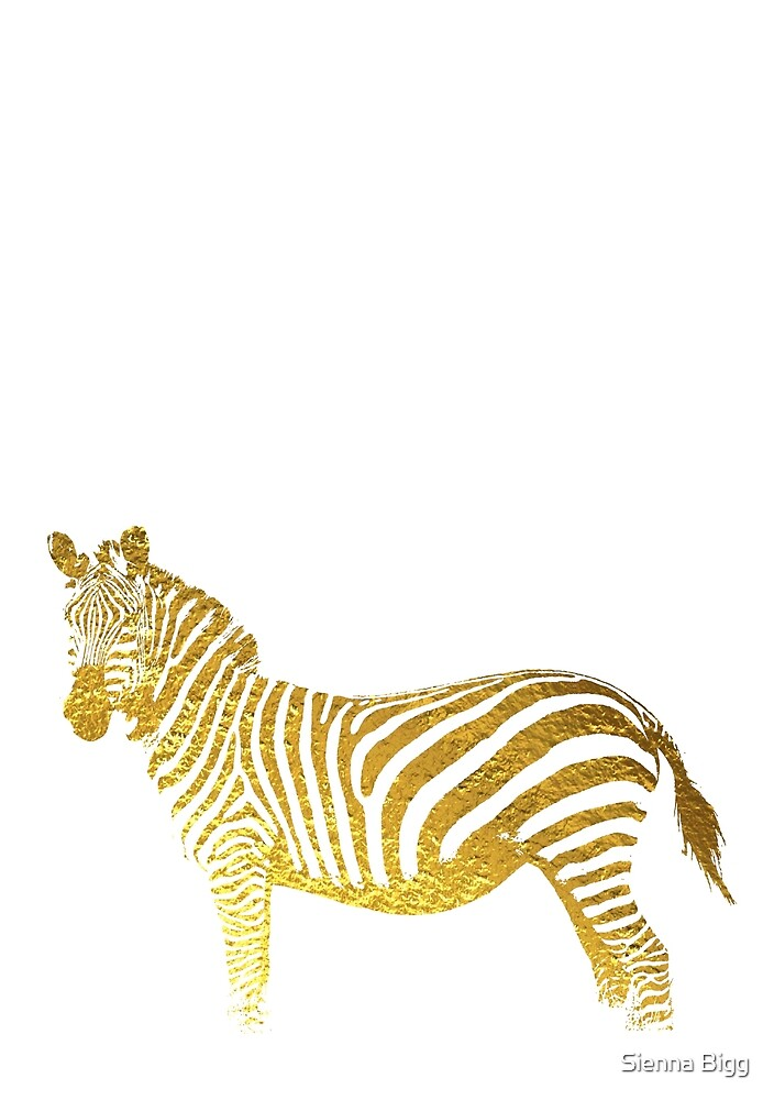Gold Zebra by Sienna Bigg