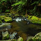 Rocky Waters by Shawn Giles