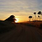 Country Road, Bridport, Tasmania by brendanscully