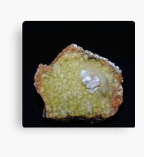 Botryoidal Agate in Green Canvas Print