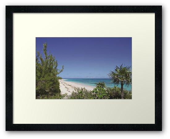 130 - Lighthouse Beach Atlantic by thebeachbook