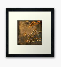 Signs and Portents Framed Print