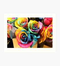 Colorful Bouquet of Rainbow Roses Art Print