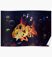 Corpse Fish Poster