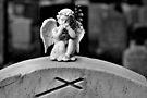 Little angel by PhotosByHealy