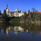 Pruhonice Castle with mirror image by christopher363