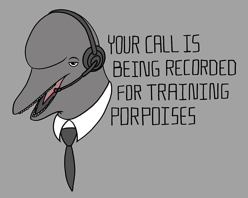 For Training Porpoises by SteveOramA