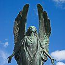 Angel by Kawka