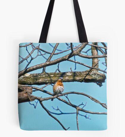 Young Bluebird Tote Bag
