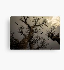 Scary!!! Canvas Print