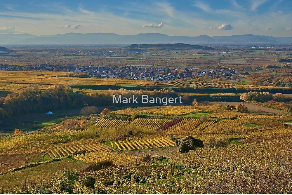 View across the Kaiserstuhl in Autumn towards Alsace by Mark Bangert