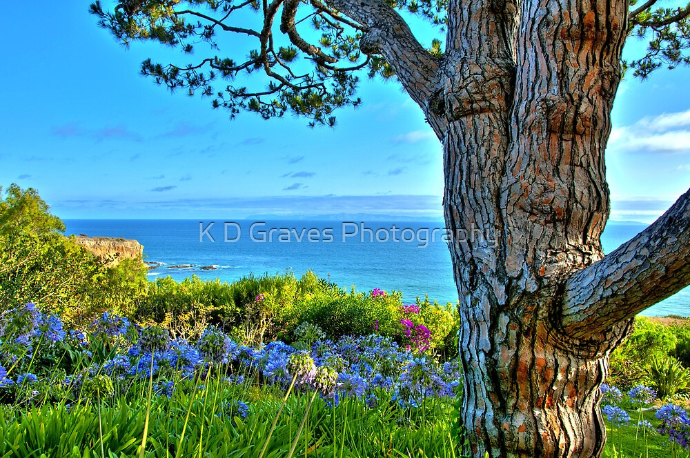 Southern California Coastline by K D Graves Photography