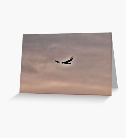 Raven Guide Greeting Card