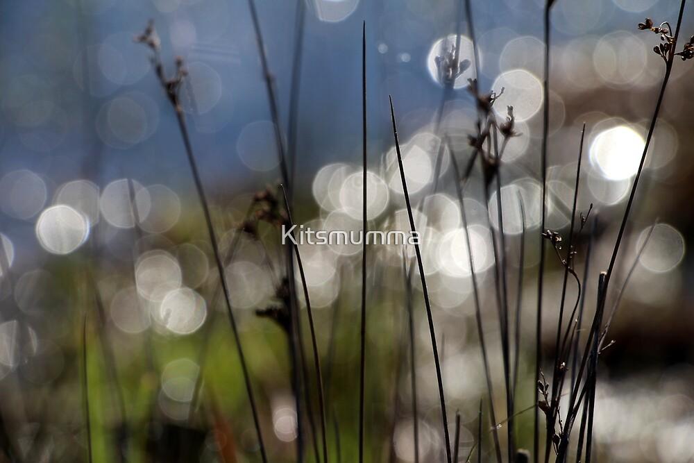 Dream Land by Kitsmumma