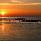 Sunrise at malibu lagoon by Tim Horton