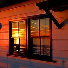 Malibu pier by Tim Horton