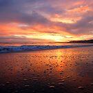 Malibu Sunset by Tim Horton