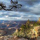 Desert view tower- Grand Canyon by Fidisoa Rasambainarivo