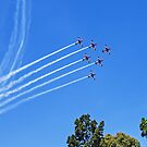 Roulettes in Formation by TonyCrehan