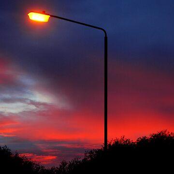 Illuminate by Lukesta