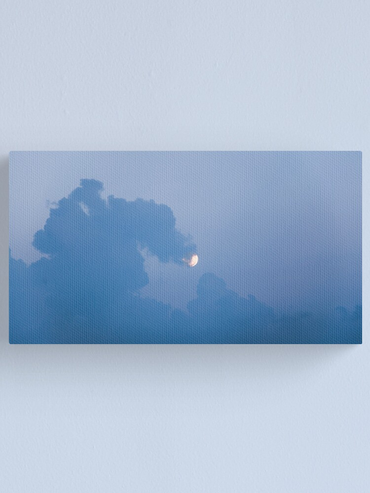 Alternate view of here be dragons Canvas Print