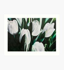 Weisse Tulpen III Art Print
