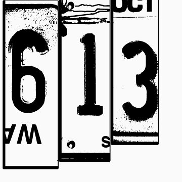 613 LICENCE PLATE by 613me
