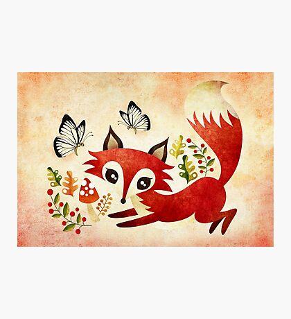 Playful Fox Photographic Print