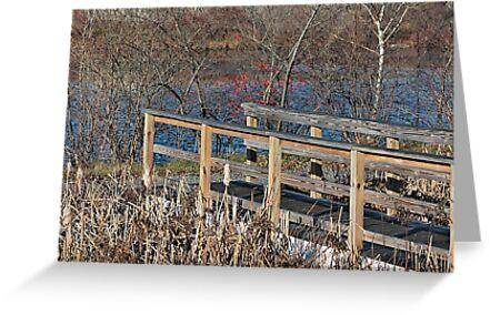 By the pond by Linda Crockett