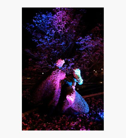 Floral Romance Photographic Print