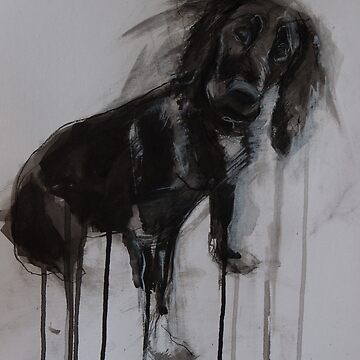 Cocker Spaniel, Black Ink and Conte Drawing by melanieroy