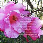 Spring Is von Terri Chandler