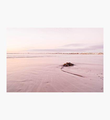 Bright Pink Photographic Print