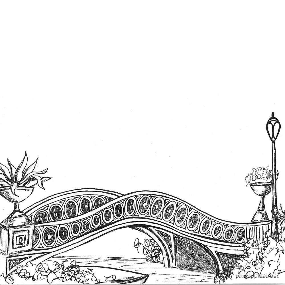 Central Park Bow Bridge by pineapplestreet