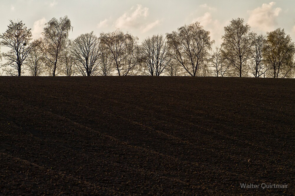 Promenade by Walter Quirtmair