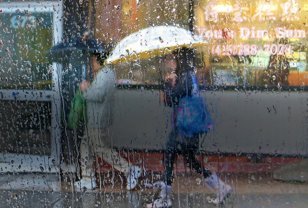 Dim Sum in the Rain by David Denny