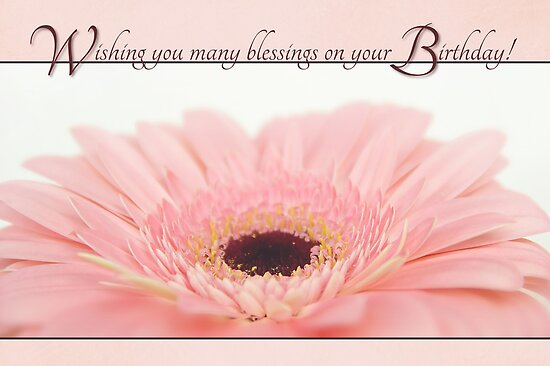 Quot Birthday Blessings Pink Gerbera Daisy Card Quot Poster By
