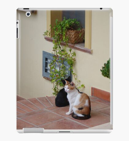 Two Friends Hanging Out iPad Case/Skin
