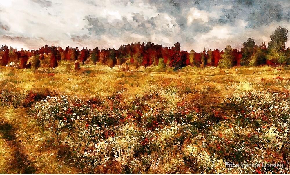 Prairie in a Dream by Erica Yanina Horsley