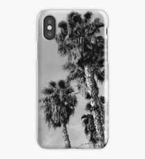 Palm Trees, Los Angeles iPhone Case