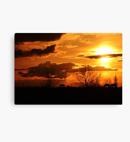 #1 Natures Hue's are Gold Canvas Print