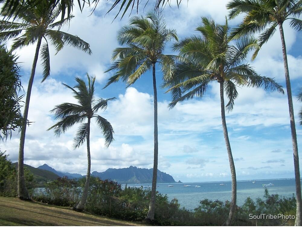 Tropical Beach, Oahu, Hawaii by SoulTribePhoto