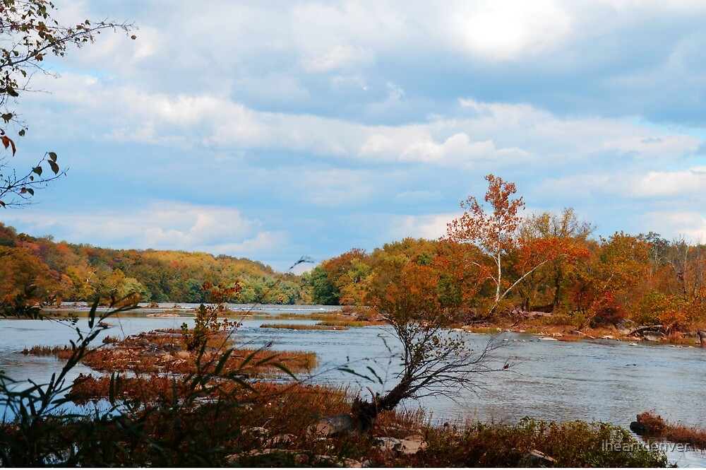Vibrant River View by iheartdenver