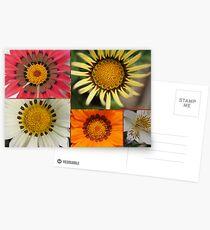 50mm Postcards